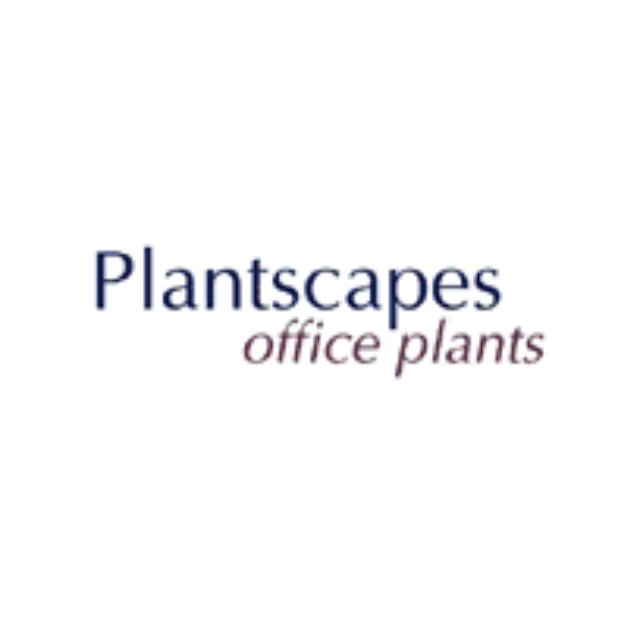 Plantscapes Office Plants